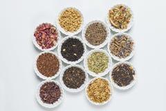Bacias brancas com as ervas diferentes para a infusão Imagem de Stock Royalty Free