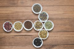 Bacias brancas com as ervas diferentes para a infusão Imagens de Stock Royalty Free
