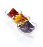 Bacias coloridas da especiaria à terra Fotos de Stock Royalty Free