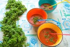 Bacias coloridas de sopa do gazpacho do tomate, com palhas bebendo Imagem de Stock Royalty Free