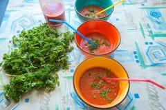 Bacias coloridas de sopa do gazpacho do tomate e de jarro de suco de tomate Foto de Stock Royalty Free