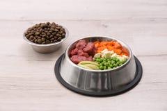 Bacias com alimento para cães seco e natural imagens de stock royalty free