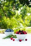 Bacias com bagas frescas em uma tabela branca no jardim Amoras-pretas, mirtilos e arandos imagens de stock