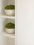 Bacias com plantas plásticas imagens de stock royalty free