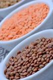 Bacias com tipos diferentes de lentilhas foto de stock