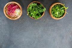 Bacias de couve e de ervas shredded Imagens de Stock