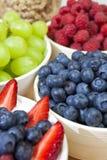 Bacias de framboesas e de morangos das uvas-do-monte fotografia de stock royalty free
