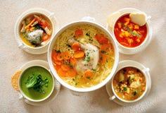 Bacias diferentes com sopas da carne, das aves domésticas, do vegetal e da leguminosa imagem de stock