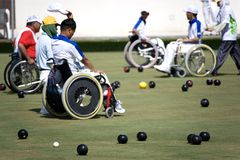 Bacias do gramado da cadeira de roda para pessoas incapacitadas (homens) fotografia de stock royalty free