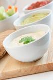 Bacias do mergulho de Hummus, de Guacamole e de salsa Foto de Stock Royalty Free