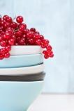 Bacias e corintos vermelhos Imagem de Stock Royalty Free