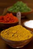 Bacias enchidas com o caril, paprika, sal, salsa Foto de Stock Royalty Free