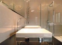 Bacini gemellare della stanza da bagno immagine stock libera da diritti