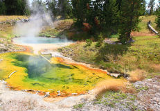 Bacino ad ovest del geyser del pollice in Yellowstone immagine stock libera da diritti