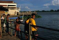 Bacino del Amazon Immagini Stock