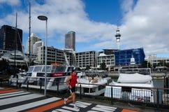 Bacino del porto del viadotto di Auckland Immagine Stock Libera da Diritti