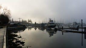 Bacino di canottaggio su una mattina nebbiosa Immagine Stock Libera da Diritti