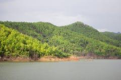 Bacino idrico abbondante Fotografia Stock