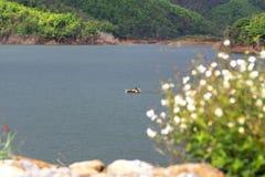 Bacino idrico abbondante Fotografia Stock Libera da Diritti