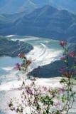 Bacino idrico del fiume della palude Immagini Stock