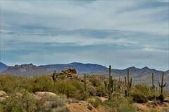 Bacino idrico di Bartlett Lake, la contea di Maricopa, stato vista scenica di Arizona, paesaggio degli Stati Uniti immagine stock libera da diritti