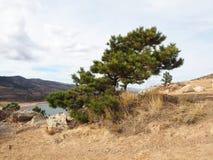 Bacino idrico di Horsetooth in Collins Colorado forte fotografie stock libere da diritti