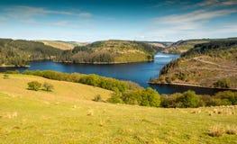 Bacino idrico di Llyn Brianne in Mezzo Galles fotografia stock libera da diritti