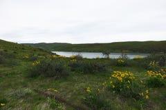 Bacino idrico di Mann Creek, Idaho immagini stock