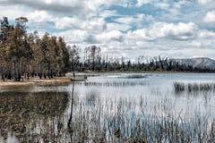 Bacino idrico di Wartook del parco nazionale di Grampians, Victoria, Australia fotografia stock