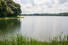 Bacino idrico superiore di Seletar a Singapore Immagini Stock Libere da Diritti
