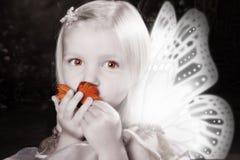 Bacio della farfalla Fotografie Stock Libere da Diritti