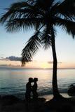 Bacio delle coppie Immagine Stock