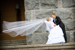 bacio dello sposo Immagini Stock