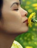 Bacio di estate della sorgente Fotografie Stock