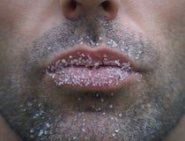 Bacio dolce Fotografia Stock