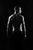 Back. Artistic Fitness on a black background, Low key Royalty Free Stock Photos