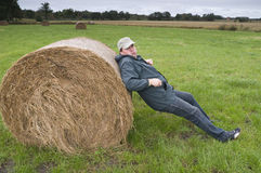 Back at the bale of straw Royalty Free Stock Photography