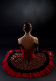 Back of a ballerina Royalty Free Stock Images