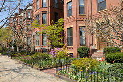 Back Bay Brownstones Royalty Free Stock Photography
