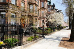 Back Bay brownstones in spring. Back Bay brownstones in early spring Stock Images
