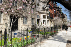 Back Bay in the spring Royalty Free Stock Photos