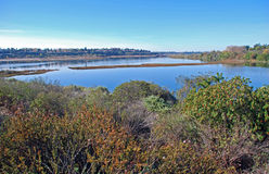Back bay wetland/estuary at Newport Beach California. View of the upper part of back bay wetland/estuary at Newport Beach California. This area is an important Royalty Free Stock Photos