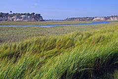 Back bay wetland at Newport Beach California. Royalty Free Stock Photography
