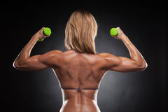 Back of beautiful sexy bodybuilder woman with green dumbbells. Royalty Free Stock Photos