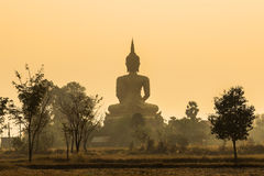 Back of big golden buddha statue on sunrise with fog background Royalty Free Stock Image