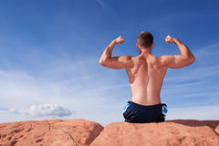 Back of a body builder Stock Photos