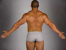 Back  of a body builder Royalty Free Stock Photo