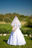 Back of the bride Royalty Free Stock Photography