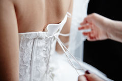 On a back of the bride tie a wedding dress Royalty Free Stock Image