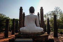 Back buddha Stock Image